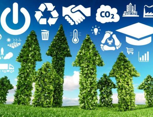Der ökologische Wandel: Nischenphänomen oder Massenbewegung?